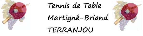 Tennis de Table à TERRANJOU